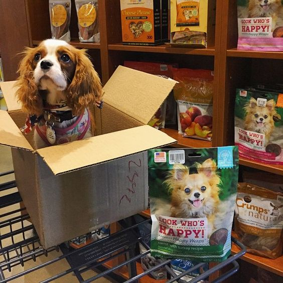 Helping mom stock the shelves at work. <3