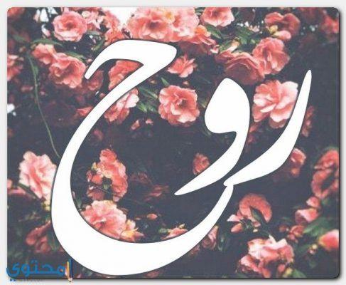 معني اسم روح وصفات شخصيتها Rouh معاني الاسماء Rouh اسم روح مذكر Logos Art