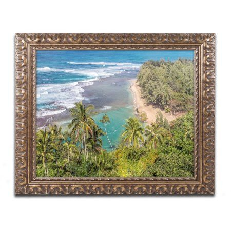 Trademark Fine Art 'Tropical Paradise' Canvas Art by Pierre Leclerc, Gold Ornate Frame, Assorted