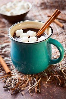 Hot chocolate recipes for kids - Daily News - February 2014 - Central Pennsylvania