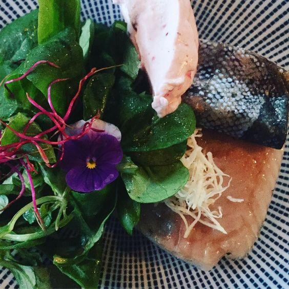 Wir machen Bloggerurlaub am Tegernsee und beginnen das vorgezogene Wochenende mit einem leckeren Abendessen im Gut Kaltenbrunn: Forelle und Vogerlsalat #gutkaltenbrunn #tegernsee #fischwildbrennt #fish #fisch #forelle #salat #salad #feldsalat #vogerlsalat #geräuchert