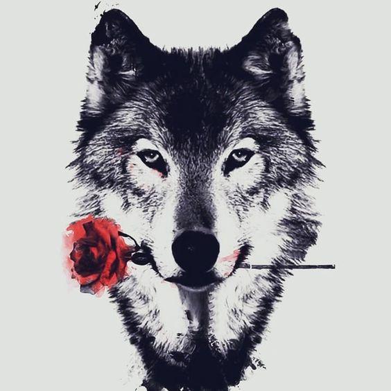 薔薇をくわえるおしゃれでかっこいい犬の壁紙