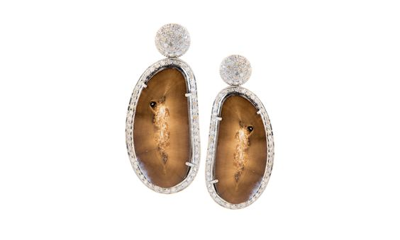 Colmillo Oscuro Fossilized Earrings