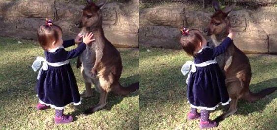 Una niña de dos años convivió con un canguro bebé, al visitar por primera vez el Parque de Reptiles de Australia.