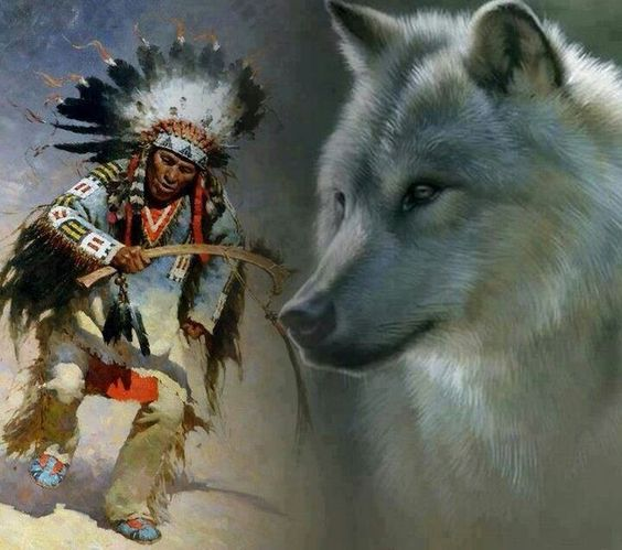Indian wolf, Wolves and Native american indians on Pinterest