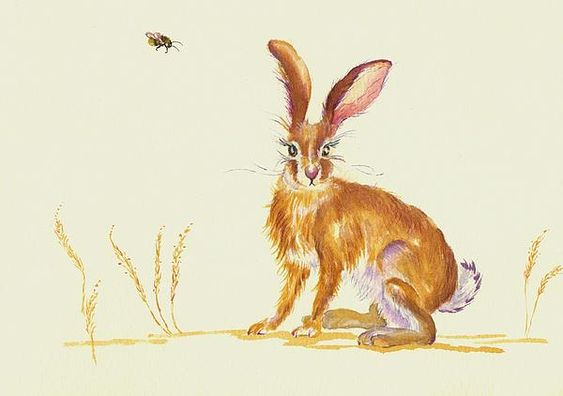 'Bee Loud'.  A young hare tunes his ample ear towards an incoming buzzy sound...for sale on e-bay: seller - greypepper71.  Prints:  http://fineartengland.com/profiles/2-debra-hall.html