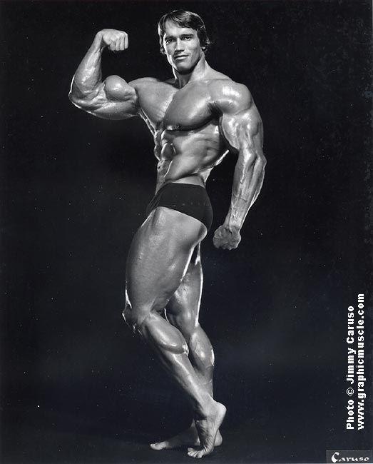 Arnold Schwarzenegger - Work Out Posing   (Actor/Director