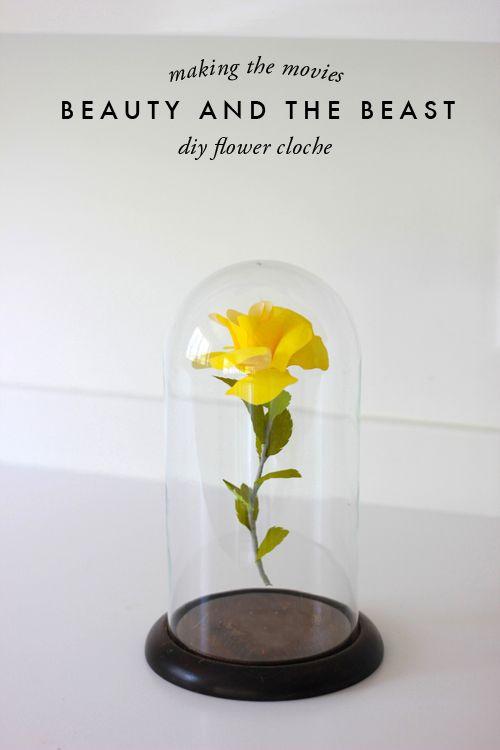 Schöne und das Biest Rose