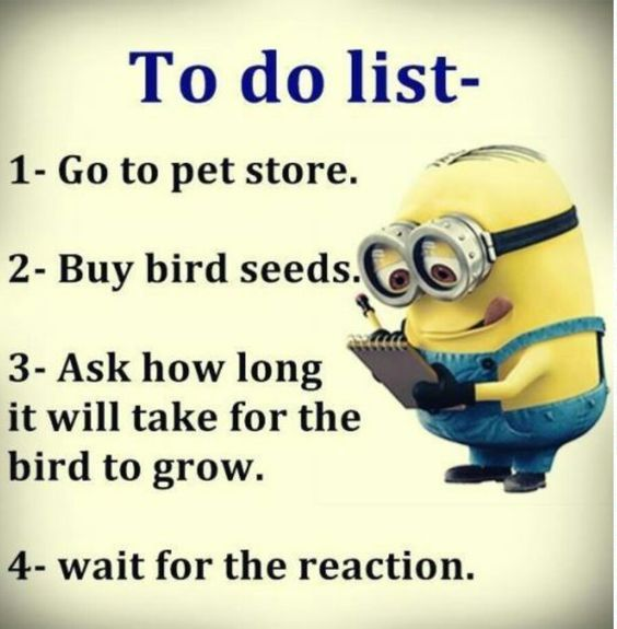 29 Minion Memes About Work Funny Minion Quotes Minions Funny Funny Minion Memes