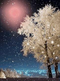 Snowy Photo: http://media.photobucket.com/image/animated%20nature/Katastrafia/animated_nature_zps92946ee1.gif