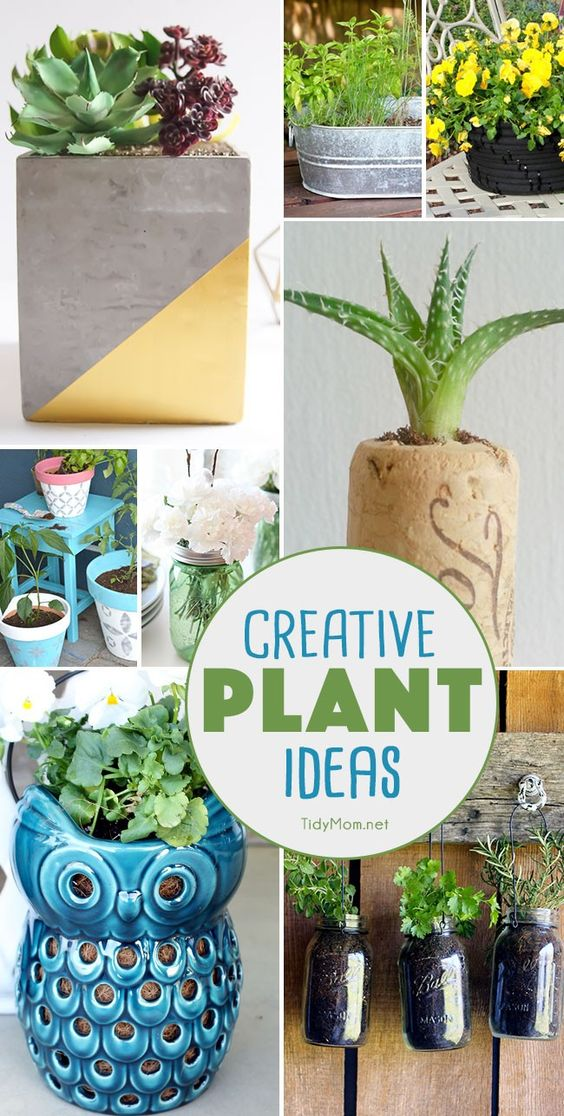 Plants Creative And Diy Planters On Pinterest
