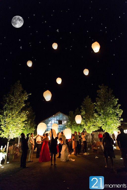 Lanterns fill the night sky.