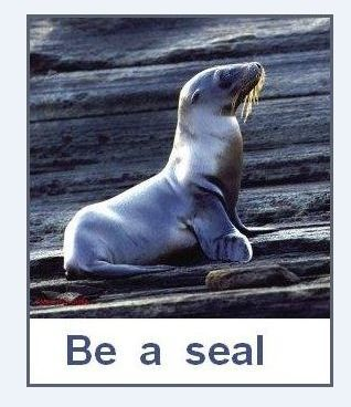 'Be a Seal' ...  let the BS just ROLL OFF !