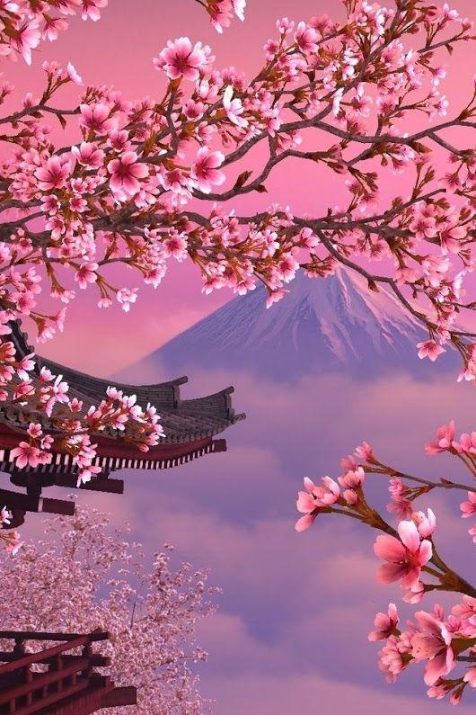 Flowering Japan Cherry Blossom Wallpaper Japanese Wallpaper Iphone Cherry Blossom Painting