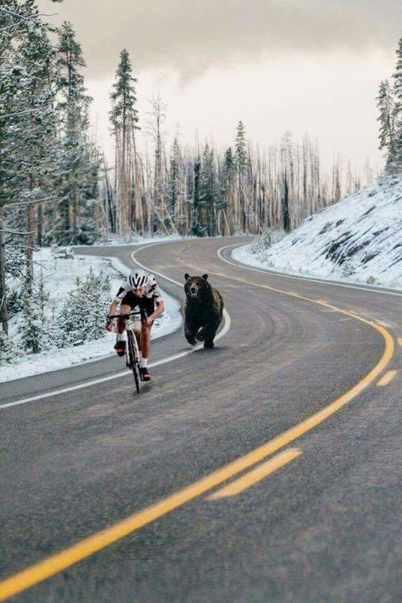 Spring sprint training in Montana! Photo from The Spoke Shop.