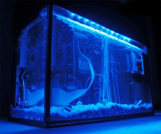 Aquarium Computers