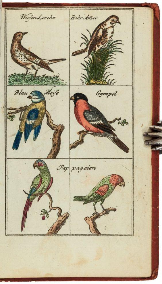 Christoph Weigel, Neuer Lust-Weg zum ziel Nützlicher Kunste und Wissenschaften. Ein unterhaltendes Lehrbuch für Zoggleiche aus dem Kinde, 1700