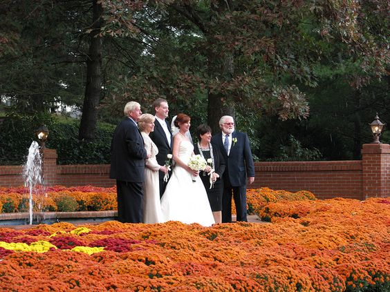 Mums the word. autumn wedding at biltmore | Recent Photos The Commons Getty Collection Galleries World Map App ... - http://www.bing.com/images/search?q=autumn+wedding+at+biltmore&qpvt=autumn+wedding+at+biltmore&FORM=IGRE#view=detail&id=3985427DEBEF0B90437556CB592B78416A0A4AE6&selectedIndex=30