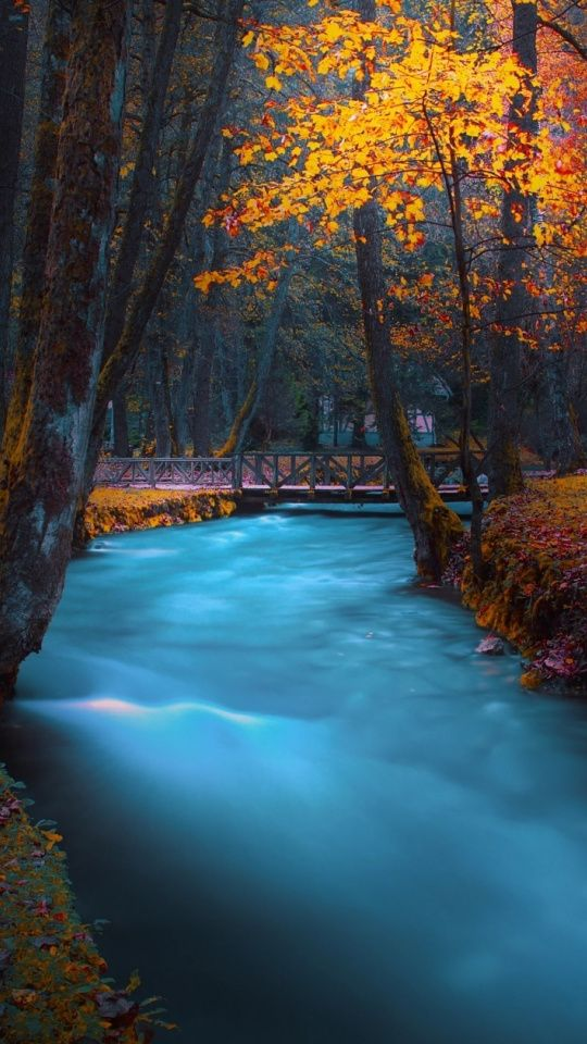Park Water Stream Autumn Nature 540x960 Wallpaper Autumn Nature Nature Fall Wallpaper Free nature wallpaper for ipad