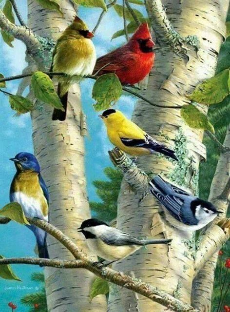 We are all in this together; each uniquely beautiful, but all birds of a feather on this Earth.