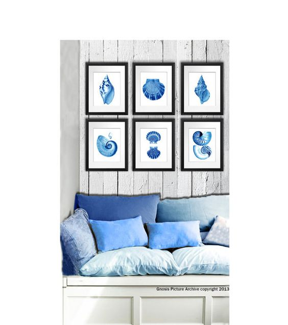 Seashells Home Decor Prints set of 6 Blue by GnosisPictureArchive
