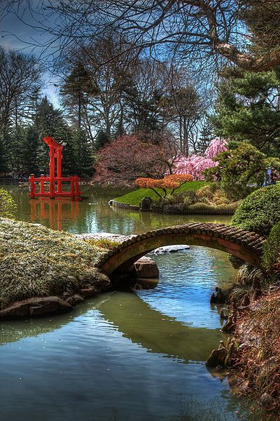 Brooklyn Botanical Gardens, NYC: Brooklyn Botanical, Japanese Hill, Beautiful Places, Japanese Gardens, New York City, Newyork, Botanical Gardens