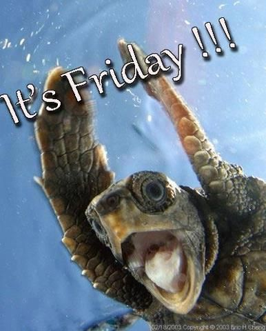 It's Friday!: