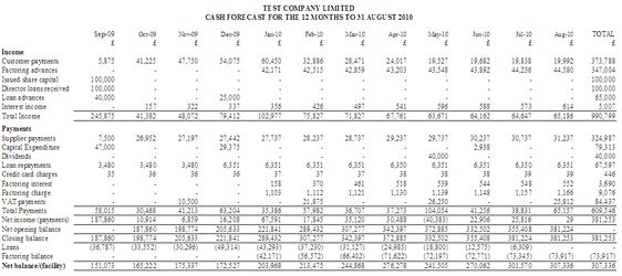 Cash Flow - 12-month profit and loss report Business Planning - profit and loss projection template