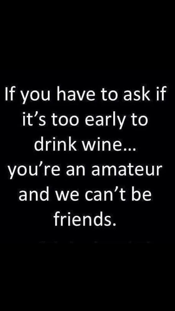 If you have to ask if it's too early to drink wine...you're an amateur and we can't be friends.: