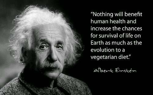 Pin On Einstein S Quotes