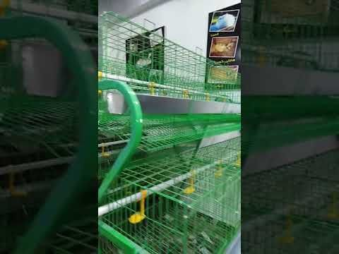 بطارية دواجن بياض هرمية تسع ١٢٠ فرخة من تصنيع شركة الشيخ لتجهيز مزارع الأرانب والدواجن والسمان Youtube Projects To Try Projects Tri