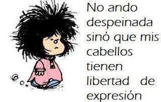 No ando despeinada sino que mis cabellos tienen libertad de expresion, frases en español
