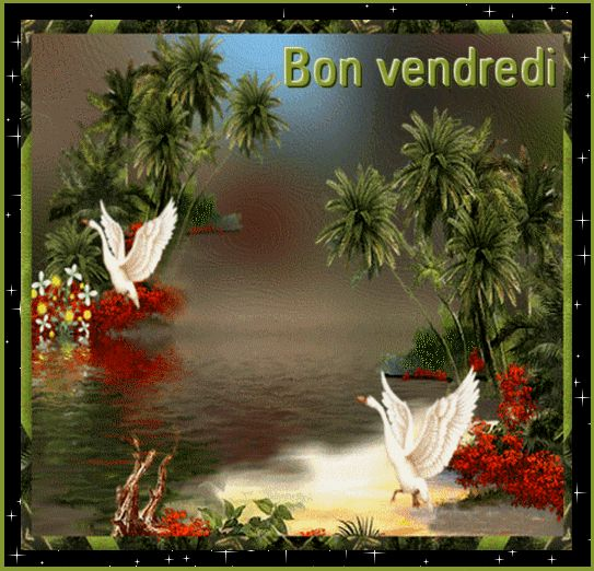 A37bbc8c Gif 543 522 Image Coloree Image Oiseau Beau Paysage