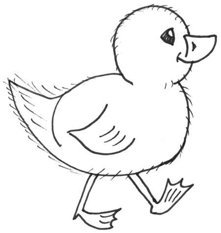 easy pics to draw | draw chicks : how to draw cartoon baby chicks