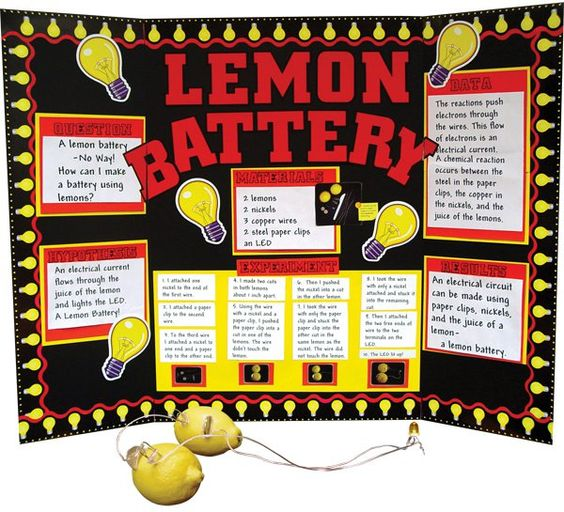 Science Experiment Display