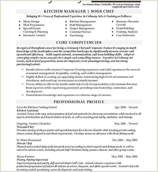 Professional Cv Sample Docx Docx Professional Sample In 2020 Resume Examples Chef Resume Sous Chef