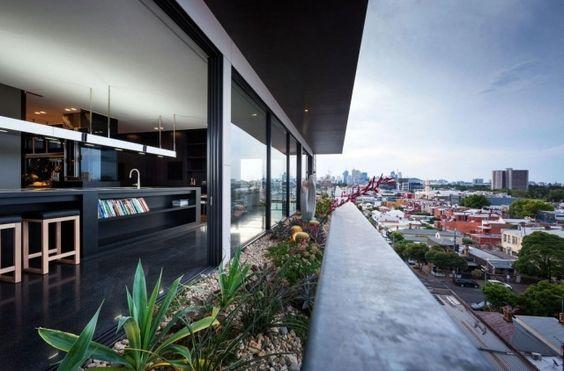 moderne wohnung-mit dachterrasse-einbau pool-begrünung, Innenarchitektur ideen