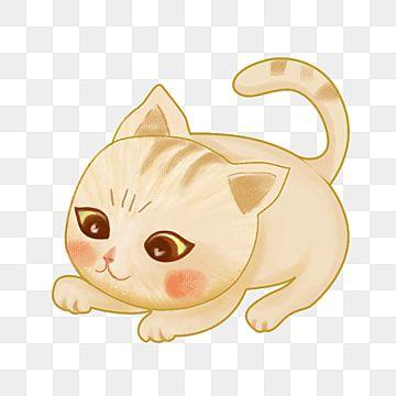 การ ต นแมวน อย ล กแมว การ ต นแมว น าร กภาพ Png สำหร บการดาวน โหลดฟร ล กแมว แมว ส ตว