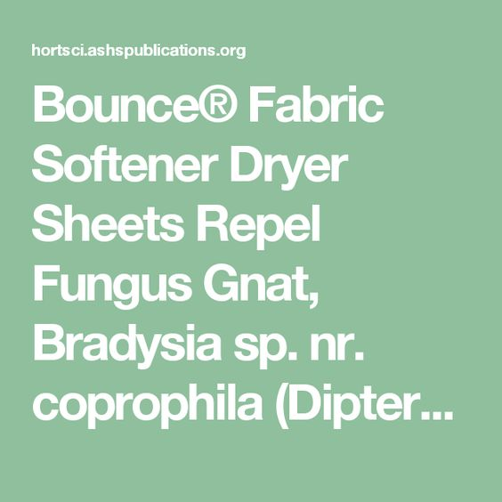 Bounce® Fabric Softener Dryer Sheets Repel Fungus Gnat, Bradysia sp. nr. coprophila (Diptera: Sciaridae), Adults