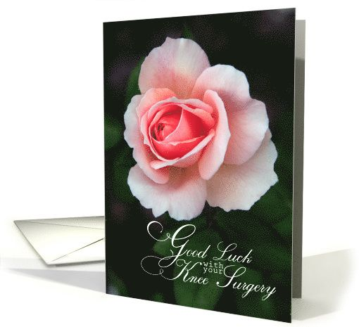 Good Luck On Your Surgery Quotes: Good Luck With Your Knee Surgery-Soft Pink Rose Card