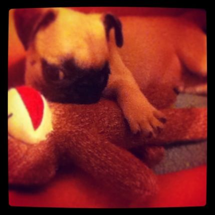 Bubbles with his new baby :)