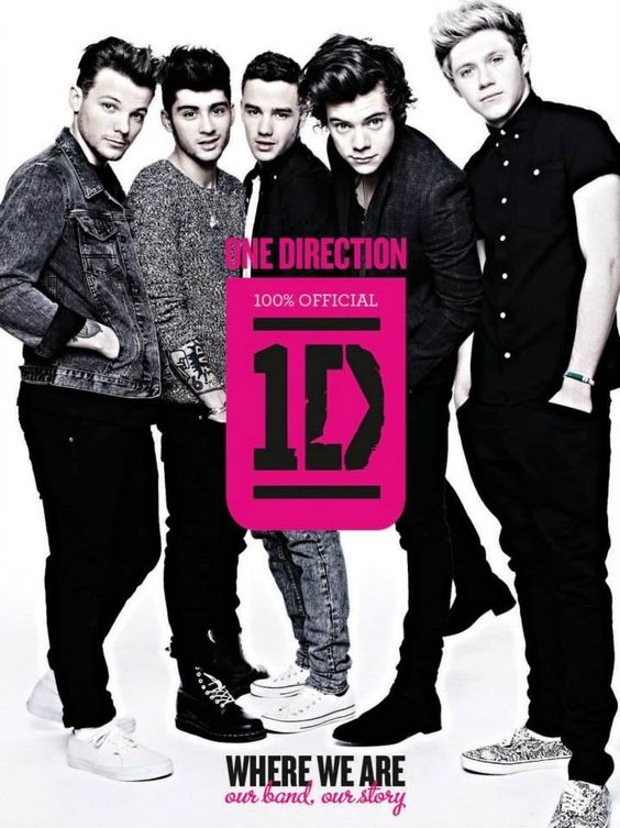 One Direction, 1D, Harry Styles, Liam Payne, Niall Horon, Louis Tomlinson, Zayn Malik