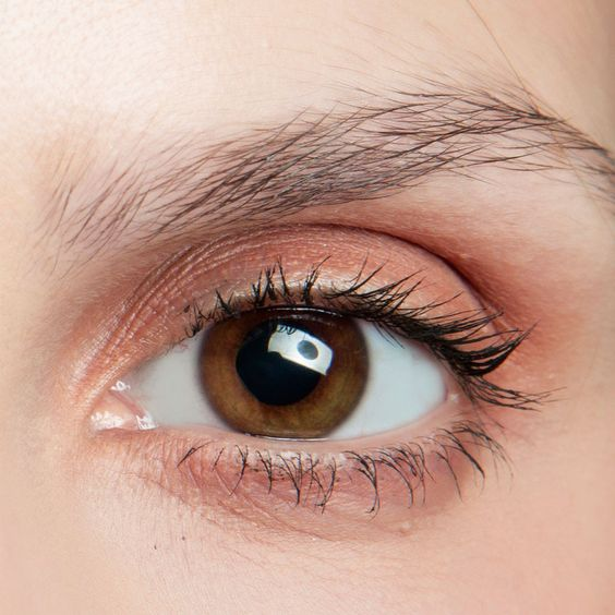 Maquillage yeux marron facile