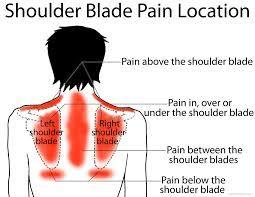 Shoulder Blade Pain Location