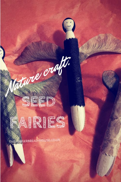 seed fairies - the gingerbread house
