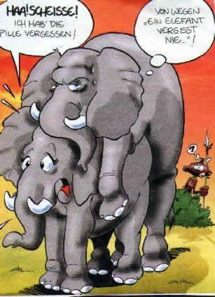 funpot: Comic Tiere elefanten vergessen nie.jpg von Floh