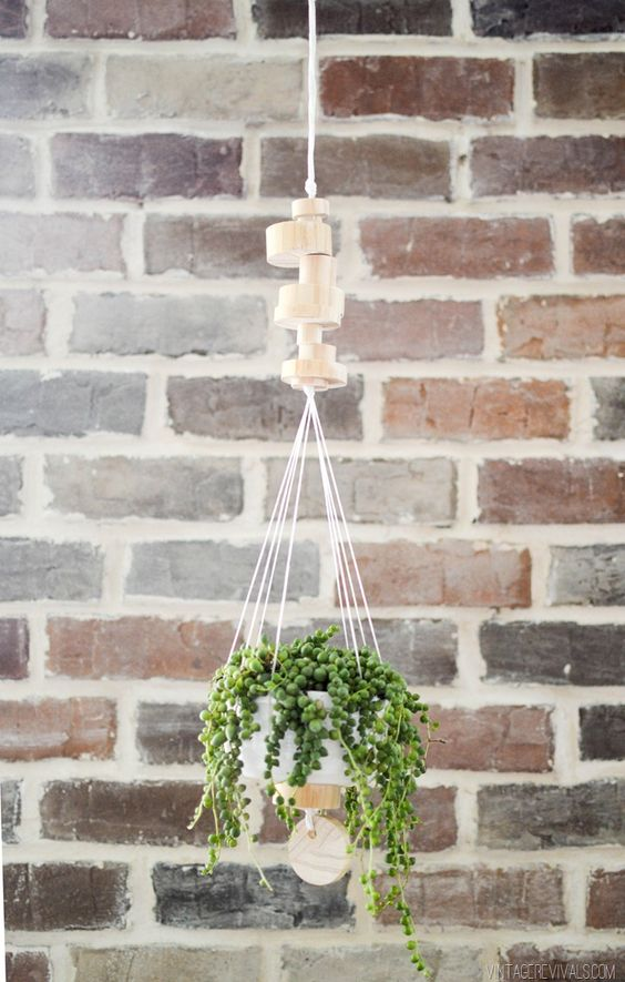 Wooden Disk Hanging Planter