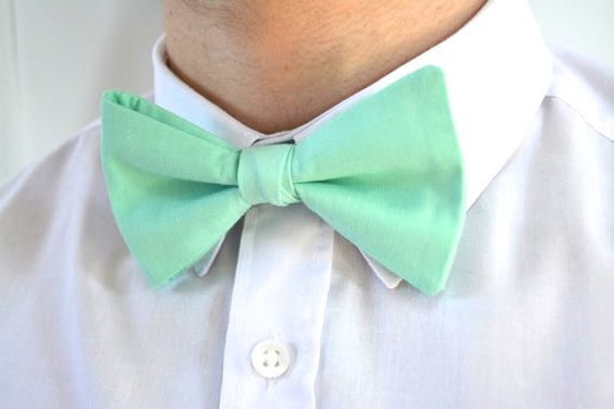 MENS MINT-Bow tie, ready tied bow tie for men, bow tie clip for men,mens bow ties