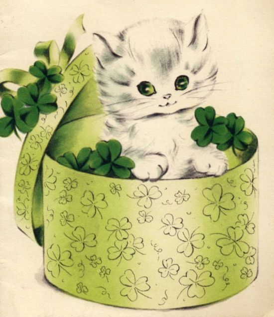 Cat in a hat box stuffed with shamrocks