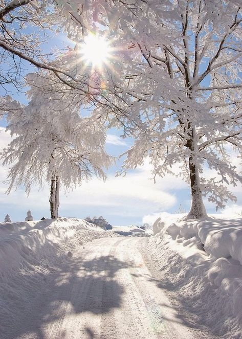 Winter landscape photography christmas snow scenes 26 ideas